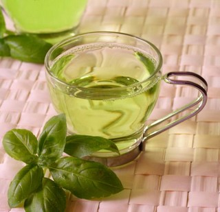 Herbs to Lose Belly Fat GreenTea