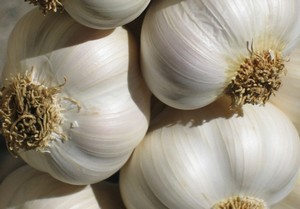 Best Fat Burning Foods Garlic